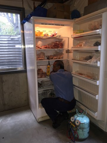 Need To Buy A Freezer All Area Appliance