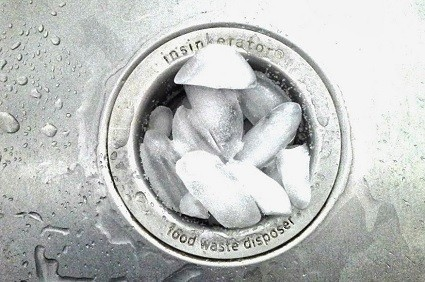 disposal with ice - Garbage Disposal Cleaner